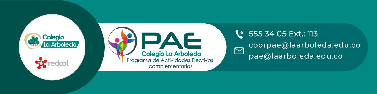 Banner-PAE-2021-2